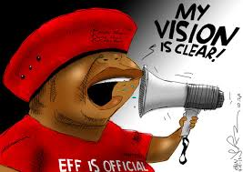 Will Scribe Malema Image 1
